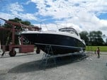40 ft. Sea Ray Boats 390 Sundancer Cruiser Boat Rental Washington DC Image 4