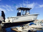 25 ft. Sea Boss by Sea Pro 235WA w/225HP Center Console Boat Rental New York Image 29