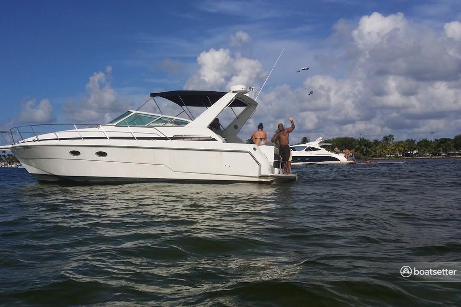 Rent a Trojan Yachts cruiser in Miami Beach, FL near me