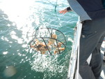 32 ft. Monark Aluminum Fishing Boat Rental East FL Panhandle  Image 5