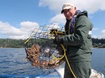 45 ft. Hunter 45CC Sloop Boat Rental Seattle-Puget Sound Image 7