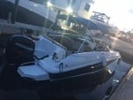 24 ft. Sea Ray Boats 240 Sundeck w/250XL Verado Bow Rider Boat Rental The Keys Image 12