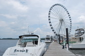 39 ft. Sea Ray Boats 38 Sundancer Cruiser Boat Rental Washington DC Image 2