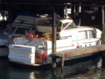 37 ft. Chris Craft Motorsailer Cruiser Boat Rental Seattle-Puget Sound Image 5