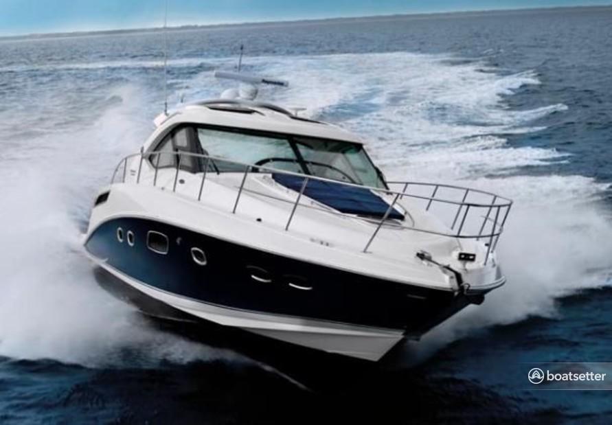 Rent a Sea Ray Boats motor yacht in Port Washington, NY near me