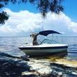 19 ft. Bayliner 195 W/Trailer Bow Rider Boat Rental Sarasota Image 6