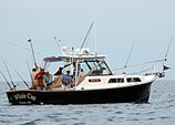 33 ft. Fortier Boats 33 Express Cruiser Boat Rental Boston Image 5