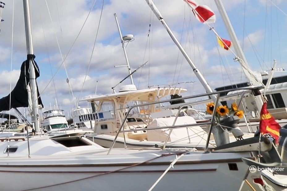 Rent a Catalina sloop in Westbrook, CT near me