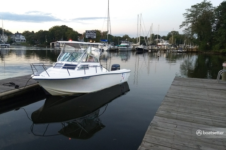 Rent a Stratos Boats fish and_ski in Annapolis, MD near me
