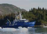 97 ft. Other Grayling Flybridge Boat Rental Seattle-Puget Sound Image 1