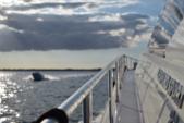 78 ft. Leopard 23M Sport Motor Yacht Boat Rental Miami Image 21