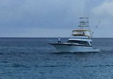 58 ft. Striker Sport Fisherman Offshore Sport Fishing Boat Rental Nassau Image 3