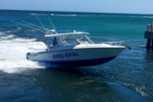 35 ft. Contender 35 Side Console Boat Rental West Palm Beach  Image 5