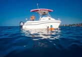 30 ft. Grady-white Cuddy Catamaran Boat Rental Rest of Southwest Image 1