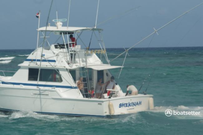 Rent a Bertram houseboat in Punta Cana, La Altagracia near me