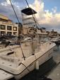 32 ft. Striper SeaSwirl 32 Offshore Sport Fishing Boat Rental Cabo San Lucas Image 1