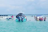 24 ft. Sailfish 234 Wac Cuddy Cabin Boat Rental Sarasota Image 2