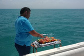 55 ft. Sea Ray Sedan Bridge Boat Rental Cancun Image 10