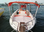 10 ft. Pursuit 3000 Express Center Console Boat Rental Cancún Image 1