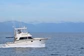 38 ft. Bertram Sportfish Offshore Sport Fishing Boat Rental Nuevo Vallarta Image 8