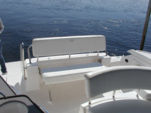 36 ft. Regal Boats 3350 Cuddy Cuddy Cabin Boat Rental Cancún Image 1