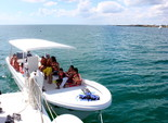 44 ft. Catamaran Cruiser 44 Catamaran Boat Rental Puerto Morelos Image 17