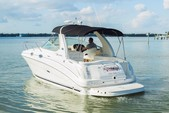 31 ft. Sea Ray Boats 280 Sundancer Cruiser Boat Rental Tampa Image 1