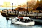 50 ft. 50' Fun Boat Motor Yacht Boat Rental Boston Image 13