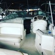 26 ft. Sea Ray Boats 240 Sundancer Cuddy Cabin Boat Rental Seattle-Puget Sound Image 1