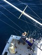 38 ft. Cabo Yachts 35 Express Offshore Sport Fishing Boat Rental The Keys Image 21
