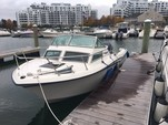 22 ft. Grady-White Boats 220 Bimini Cuddy Cabin Boat Rental Boston Image 14