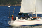 36 ft. Catalina 36 MK II Sloop Boat Rental San Francisco Image 1