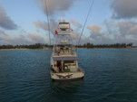 65 ft. Donzi Convertible Offshore Sport Fishing Boat Rental West Palm Beach  Image 16