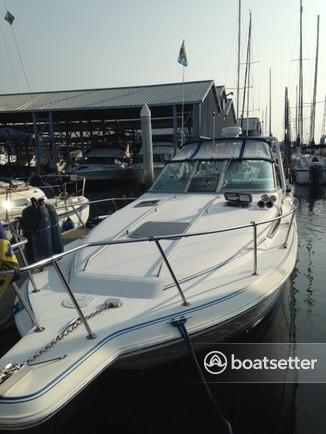Rent a Sea Ray Boats cruiser in Edmonds, WA near me