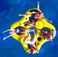 40 ft. Vandutch 40 Cruiser Boat Rental Miami Image 4