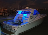 34 ft. Sea Ray Boats 330 Express Cruiser Cruiser Boat Rental Miami Image 14