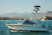 38 ft. Blackfin Yachts 38 Convertible Saltwater Fishing Boat Rental Cabo San Lucas Image 2