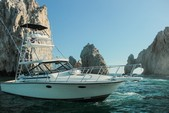 38 ft. Blackfin Yachts 38 Convertible Saltwater Fishing Boat Rental Cabo San Lucas Image 3