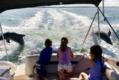24 ft. Hurricane Boats SD 2400 Deck Boat Boat Rental Tampa Image 4