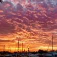 49 ft. Sea Ray Boats 44 Sundancer Cruiser Boat Rental Los Angeles Image 22