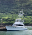 46 ft. Merritt Merritt 46 Performance Fishing Boat Rental Rest of Southwest Image 8