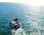 25 ft. Avalon Pontoons 24' Windjammer Quad Fish Pontoon Boat Rental East FL Panhandle  Image 10