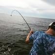 25 ft. Avalon Pontoons 24' Windjammer Quad Fish Pontoon Boat Rental East FL Panhandle  Image 12