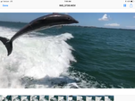 50 ft. Sea Ray Boats 480 Motor Yacht Cruiser Boat Rental Fort Myers Image 7