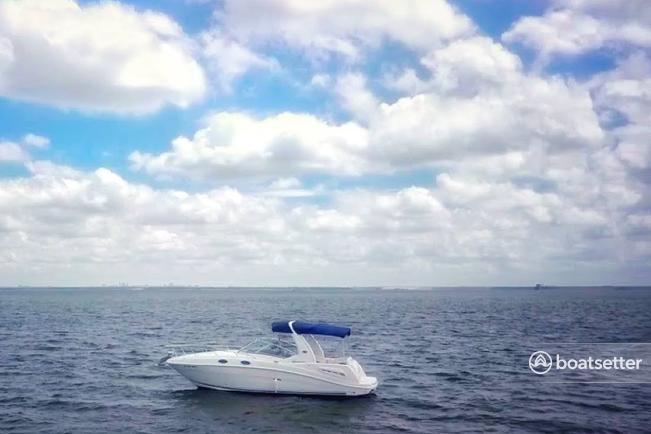 Sea Ray Boats 260 Sundancer