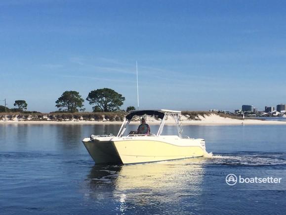 Rent a World Cat Boats bow rider in Orange Beach, AL near me