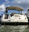 41 ft. Sea Ray Boats 410 Sundancer Motor Yacht Boat Rental Dallas-Fort Worth Image 2