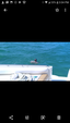 38 ft. Sea Ray Boats 370 Sundancer Cruiser Boat Rental Miami Image 9