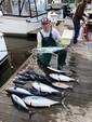 34 ft. Luhrs Boats 31 Open Flybridge Boat Rental Rest of Southeast Image 10