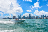 18 ft. Bayliner Element XL 4-S Mercury  Bow Rider Boat Rental Miami Image 5